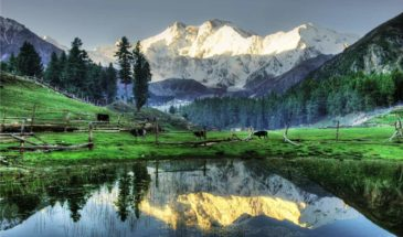 Fairy Meadows & Kingdom of Hunza